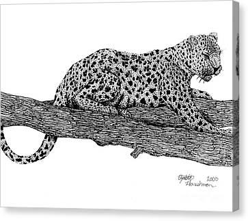 Resting Days Canvas Print by Elizabeth Harshman