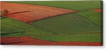 Canvas Print featuring the photograph Resting Fields 1 by Thomas Born