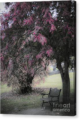 Resting Place Canvas Print by Karen Lewis