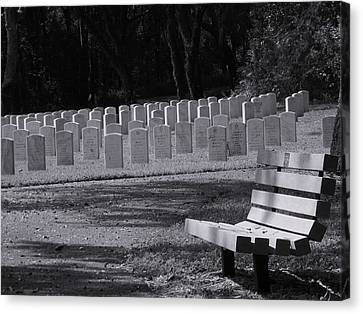 Resting Place Canvas Print by Warren Thompson