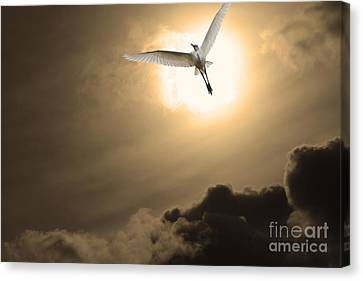 Return To Eternity . Gold Cut Canvas Print by Wingsdomain Art and Photography