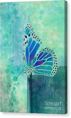 Reve De Papillon - S02b Canvas Print