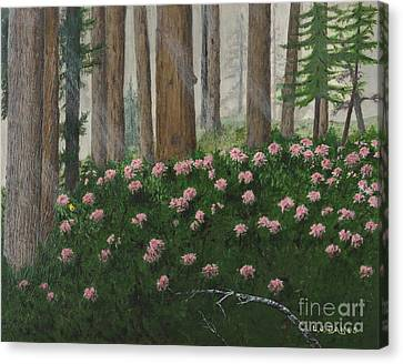 Rhododendrons And Redwoods Canvas Print