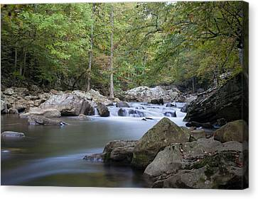 Richland Creek Canvas Print by David Troxel