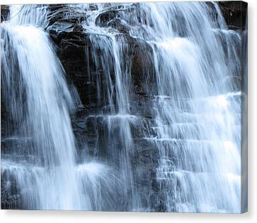 Ricketts Glen Waterfall 3942 Canvas Print by David Dehner