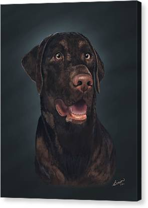 Rico Canvas Print by Lisa Binion