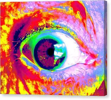 Rico's Eye Canvas Print by Renate Nadi Wesley