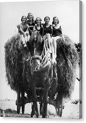 Ride On A Hay Cart Canvas Print by Fox Photos