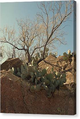 Canvas Print featuring the photograph Ridgeline by Louis Nugent