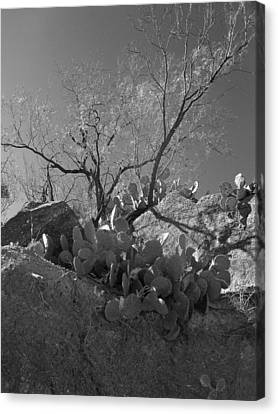 Canvas Print featuring the photograph Ridgeline Two by Louis Nugent