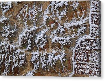Rime-covered Brick And Stone Wall Canvas Print by Mark Taylor
