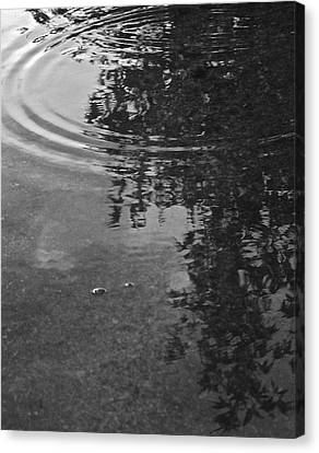 Canvas Print featuring the photograph Rippled Tree by Kume Bryant