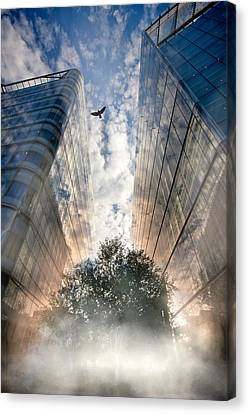 Canvas Print featuring the photograph Rise by Richard Piper