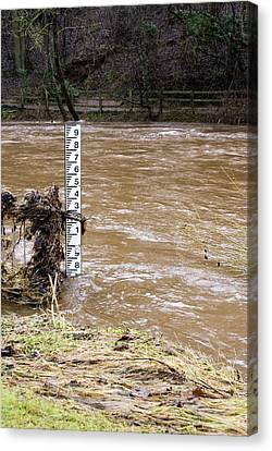 Rising River Level Canvas Print by Mark Williamson