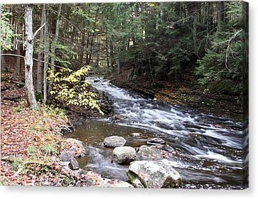 River Below Falls 3 Canvas Print