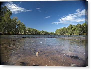 Canvas Print featuring the photograph River Crossing. by Carole Hinding