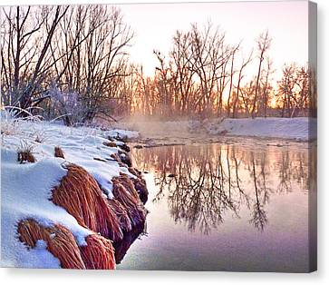 Canvas Print featuring the photograph River Grasses Colorado by William Fields