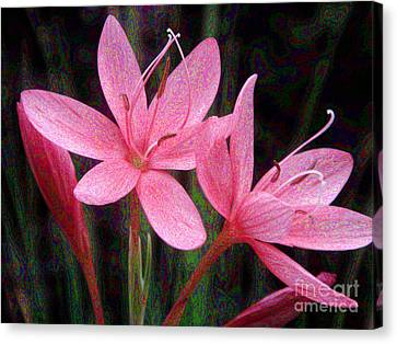 River Lily Canvas Print by Yvonne Johnstone
