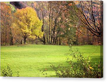 Canvas Print featuring the photograph River Road Field by Tom Singleton