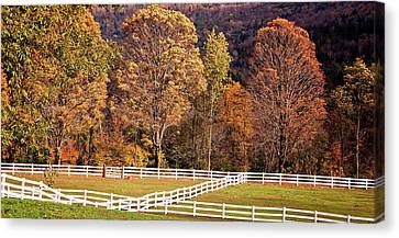 Canvas Print featuring the photograph River Road by Tom Singleton