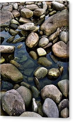 River Rocks Canvas Print by Nick  Shirghio