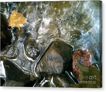 River Swirls Canvas Print