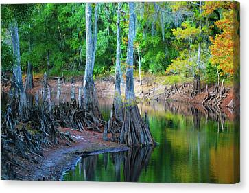Riverside Canvas Print by Bill Barber