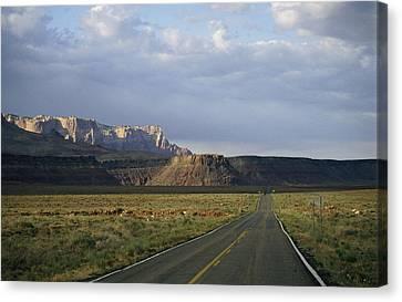 Road In Arizona Canvas Print by David Edwards