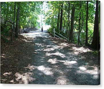 Canvas Print featuring the photograph Road Less Traveled by Lou Ann Bagnall