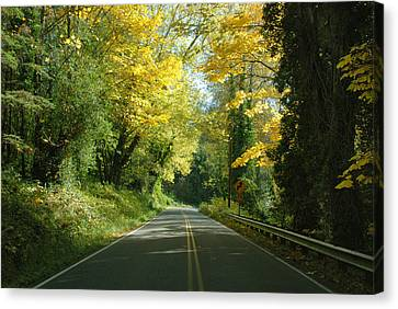 Road Through Autumn Canvas Print by Kathleen Grace
