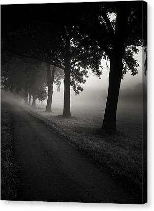 Road To Nowhere.... Canvas Print by Jaromir Hron