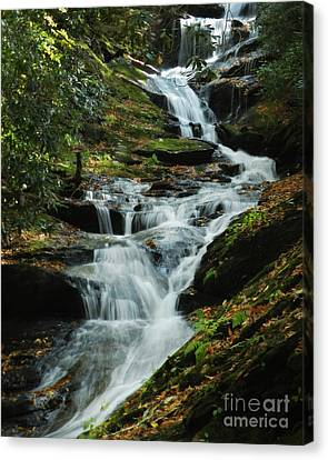 Canvas Print featuring the photograph Roaring Fork Falls by Deborah Smith