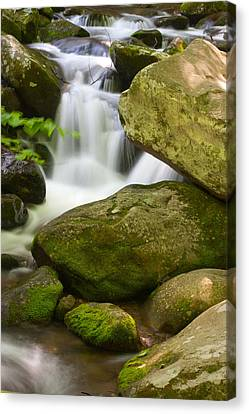 Roaring Forks Canvas Print by Cindy Haggerty