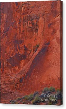 Rock Art Canvas Print