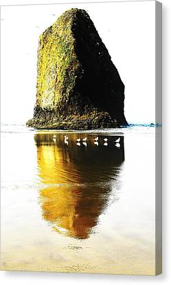 Rock At Silver Point Oregon Canvas Print by Steven A Bash
