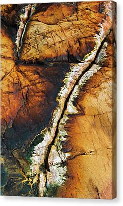 Rock Detail, Killarney Provincial Park Canvas Print by Mike Grandmailson