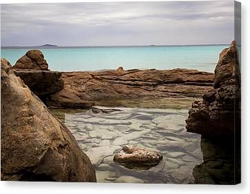 Canvas Print featuring the photograph Rock Pool by Serene Maisey