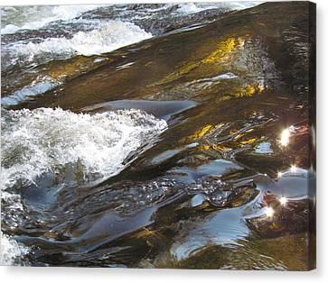 Rock Reflects Canvas Print by Christine Hafeman