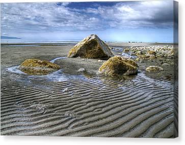 Rocks And Sand Canvas Print by Michele Cornelius