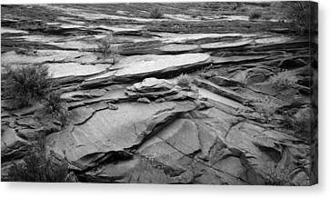 Rocks In Black And White At Zion National Park Canvas Print by Twenty Two North Photography