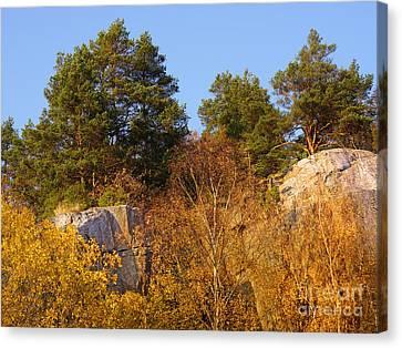 Rocky Autumn Sun Canvas Print by Lutz Baar