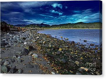 Rocky Beach In Western Canada Canvas Print by Louise Heusinkveld
