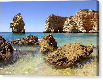 Rocky Coast Canvas Print by Carlos Caetano