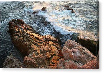 Canvas Print featuring the photograph Rocky Coast In Warm Sun by Michael Rock