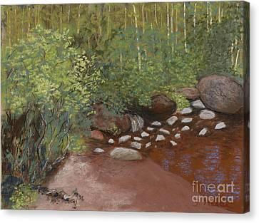 Rocky Mountain Creek Canvas Print by Ginny Neece
