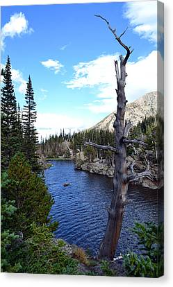 Rocky Mountain National Park1 Canvas Print