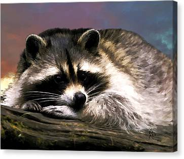 Canvas Print featuring the painting Rocky Raccoon by Robert Smith