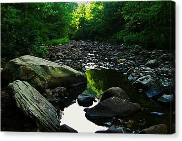 Rocky River Canvas Print by Joyce Kimble Smith