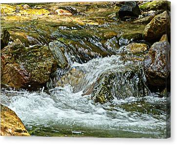 Canvas Print featuring the photograph Rocky River by Lydia Holly