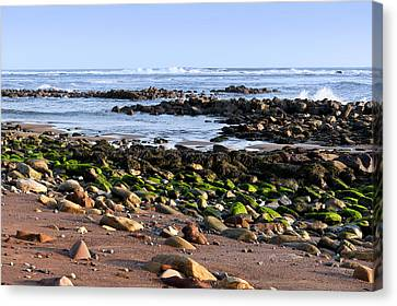 Rocky Shore Canvas Print by Svetlana Sewell
